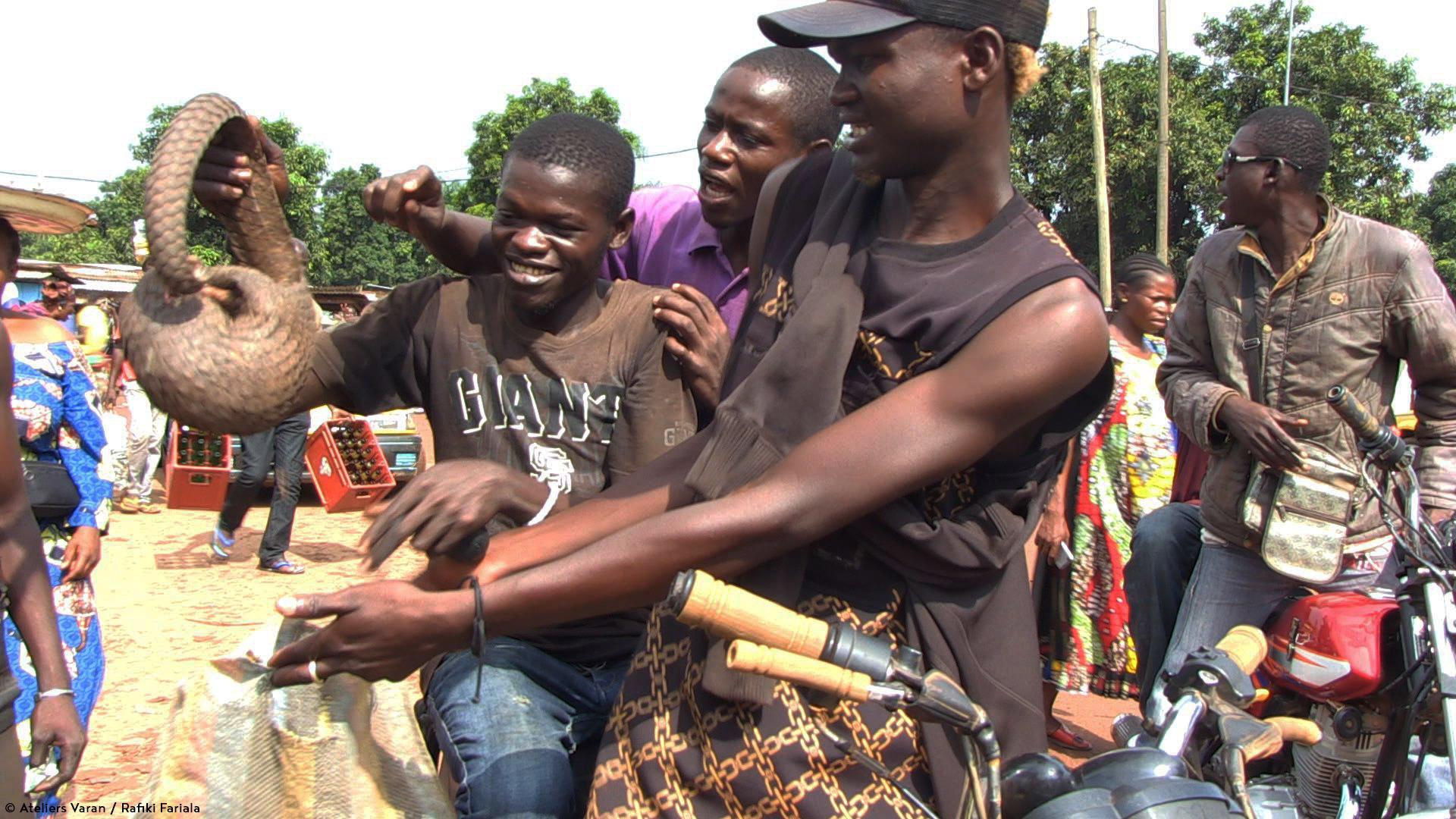 CENTRAFRIQUE : PREMIERES PRISES
